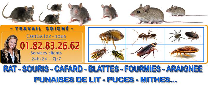 Dératisation Neuville sur Oise 95000