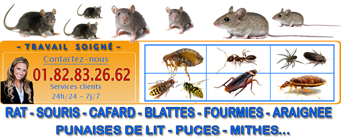 Dératisation Nogent sur Oise 60180
