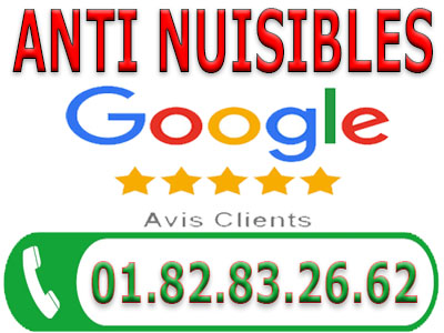 Puce de Lit Noiseau 94880
